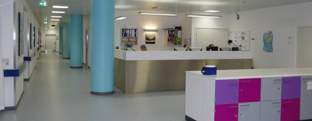 DSS hospitalsseminar